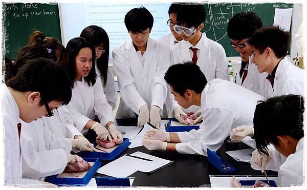 自然科實驗課程