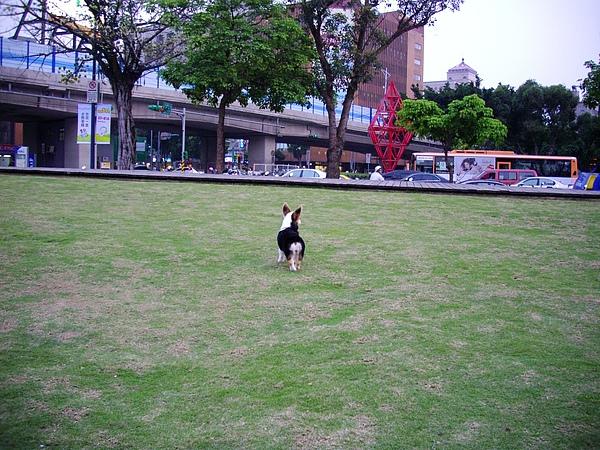 20100322 照片 005.JPG