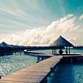 馬爾地夫-波杜希蒂島3.jpg