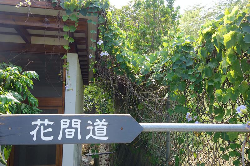 DSC06078_副本