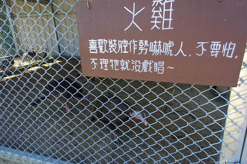 DSC02043_副本