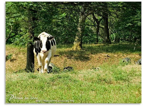 日月山景休閒農場20140716已修圖039.jpg