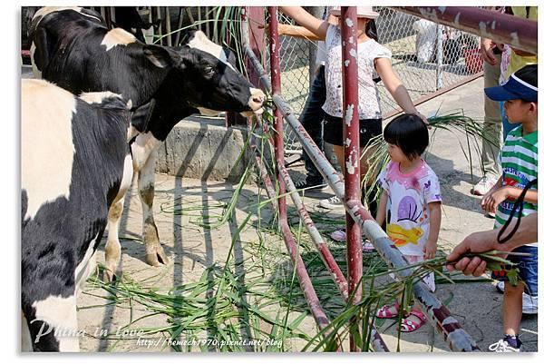 日月山景休閒農場20140716已修圖050.jpg