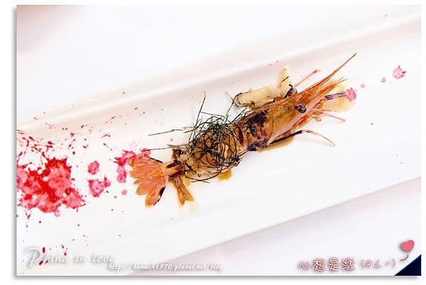 5牡丹蝦海膽 D (10).jpg