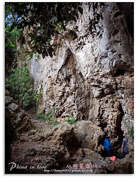 墾丁社頂公園自然景觀21.jpg