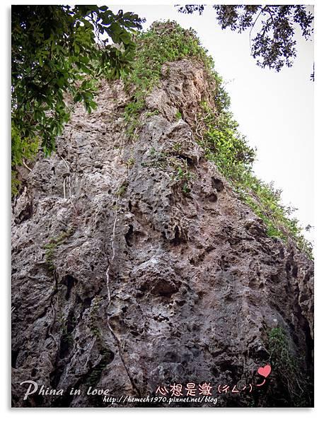 墾丁社頂公園自然景觀27.jpg