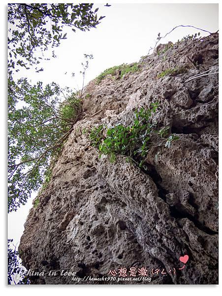 墾丁社頂公園自然景觀28.jpg