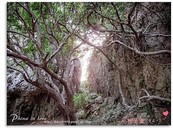 墾丁社頂公園自然景觀29.jpg
