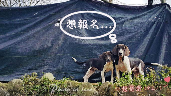 5傳統婚禮8禮成花絮005-2 拷貝.jpg