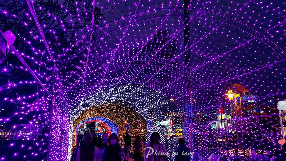 20190315屏東燈會在台南091 拷貝.jpg