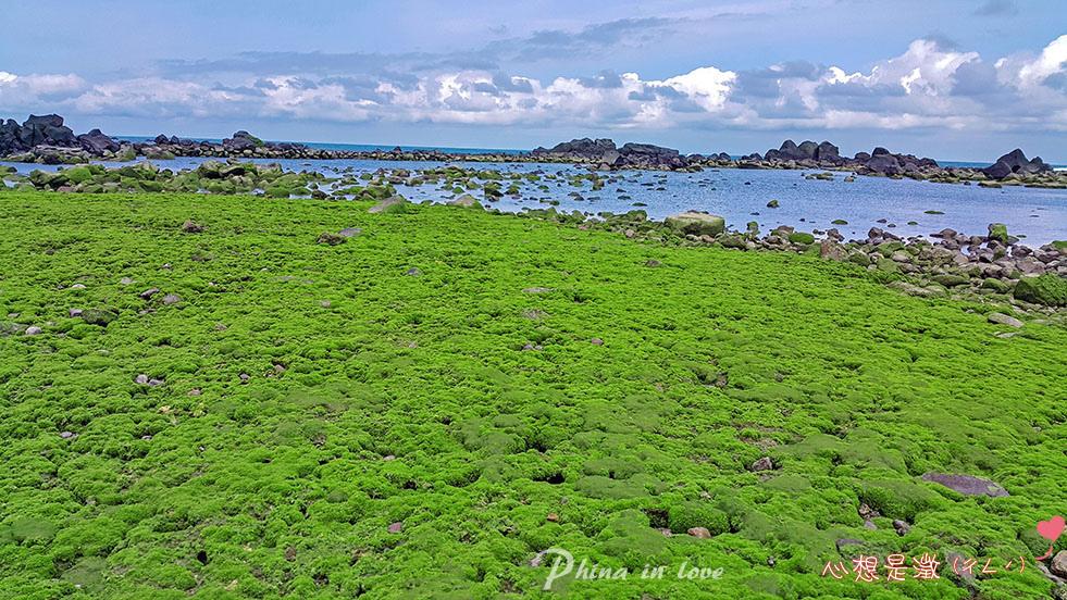 085半島秘境暢遊半島石滬綠石槽0020 拷貝.jpg