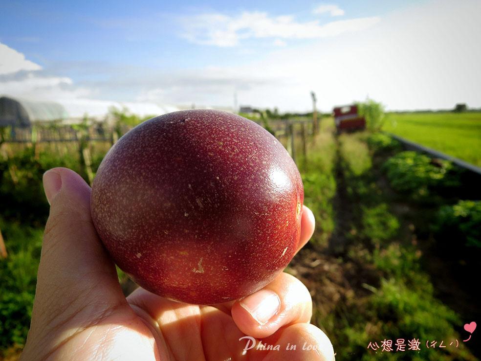 1-崇美農場024.jpg
