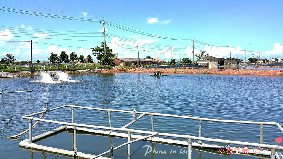 4-金煌休閒漁塭001.jpg