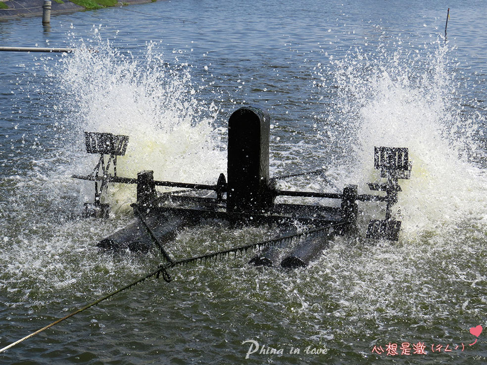 4-金煌休閒漁塭005.jpg