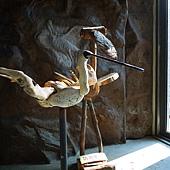 七股候鳥研究中心