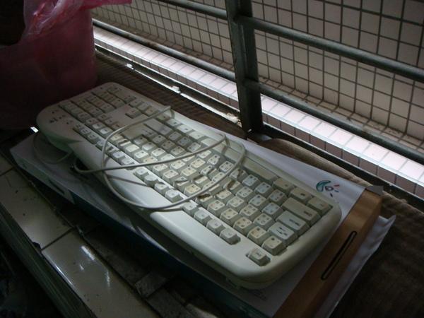 窗檯旁的鍵盤.JPG