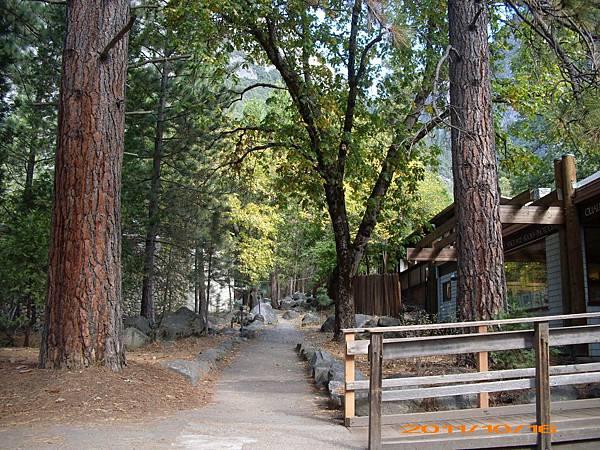11-1016-Yosemite NP 24.JPG
