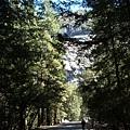 11-1023-Yosemite-011.JPG