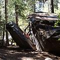 11-1023-Yosemite-013.JPG