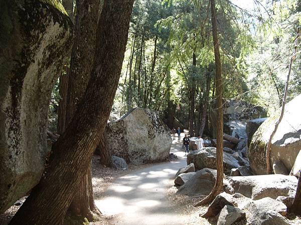 11-1023-Yosemite-014.JPG