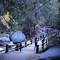 11-1023-Yosemite-019.JPG