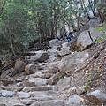 11-1023-Yosemite-033.JPG