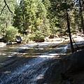 11-1023-Yosemite-044.JPG