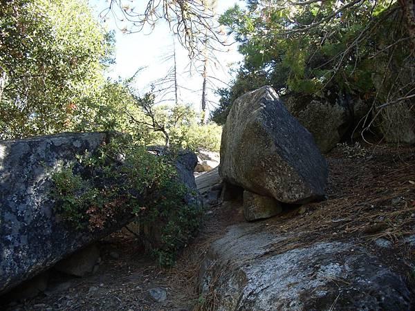 11-1023-Yosemite-049.JPG