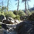 11-1023-Yosemite-050.JPG