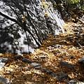 11-1023-Yosemite-052.JPG