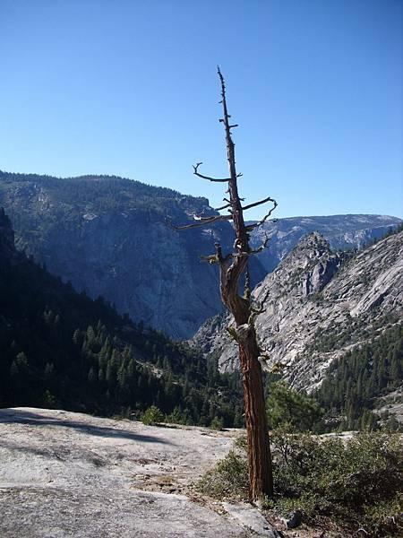 11-1023-Yosemite-069.JPG