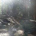 11-1023-Yosemite-073.JPG