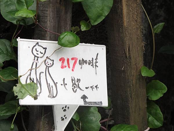 11-1203-猴硐070.JPG