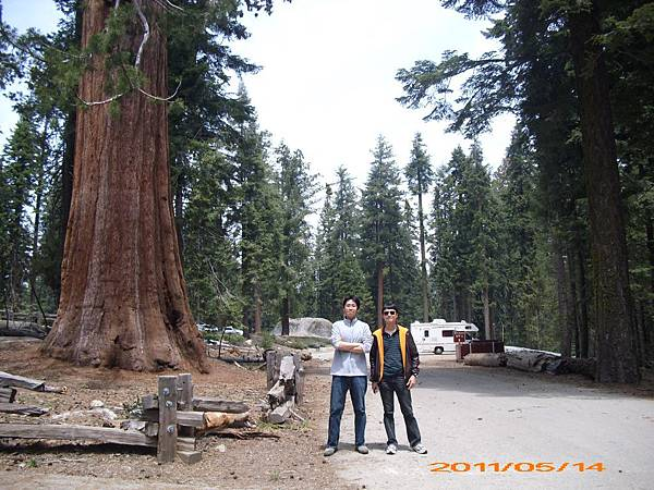 33 - Giant Forest Museum.jpg