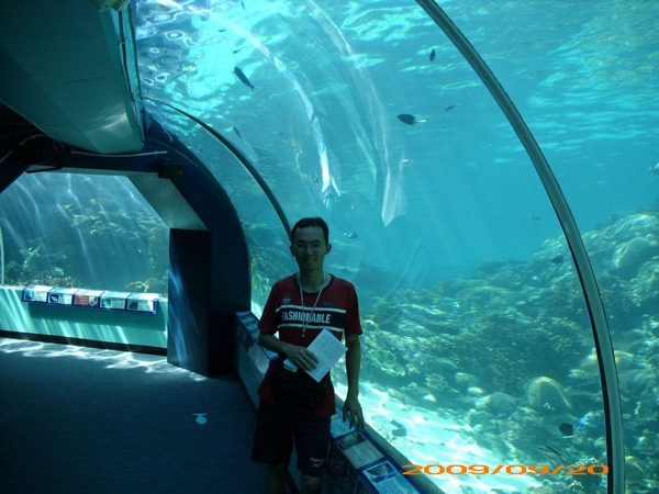 Townsville ReefHQ - me
