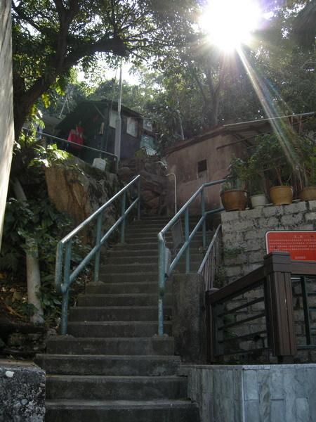 豔陽照樓梯