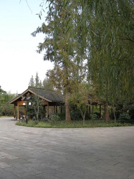 西湖 04