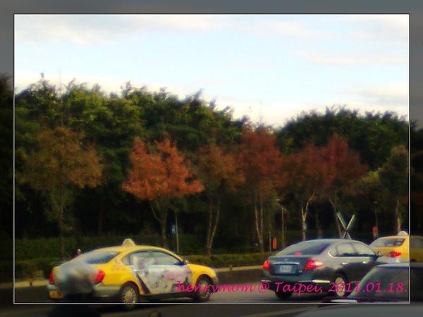 影像0098s.jpg