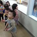 IMAG6881_mini.jpg