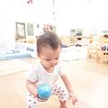 IMG_1426_mini.JPG
