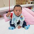 IMG_2417 (68)_mini.JPG