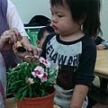 IMAG0009 (26)_mini.jpg