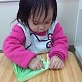 IMAG0846_mini_mini.jpg