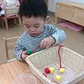 IMAG0511_mini.jpg