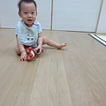1 (5)_mini.JPG