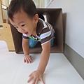 1 (3)_mini.JPG
