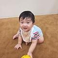 1 (38)_mini.JPG