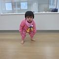 IMG_0047_mini.JPG