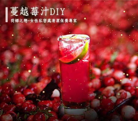 蔓越莓汁diy