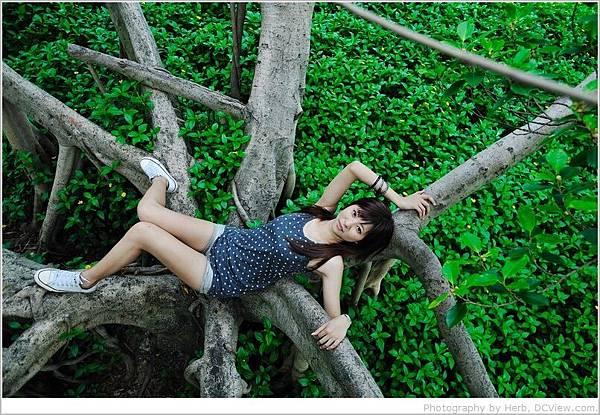 樹的枝幹_02.jpg